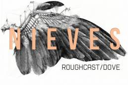 song to listen-roughcast-by-nieves-dove-glasgow-indie music-indie rock-new music-wolfinasuit-wolf in a suit