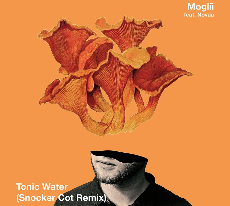 remix it-tonic water-by-moglii-ft-novaa-snocker cot-remix-indie music-new music-indie pop-Germany-music blog-indie blog-wolf in a suit-wolfinasuit