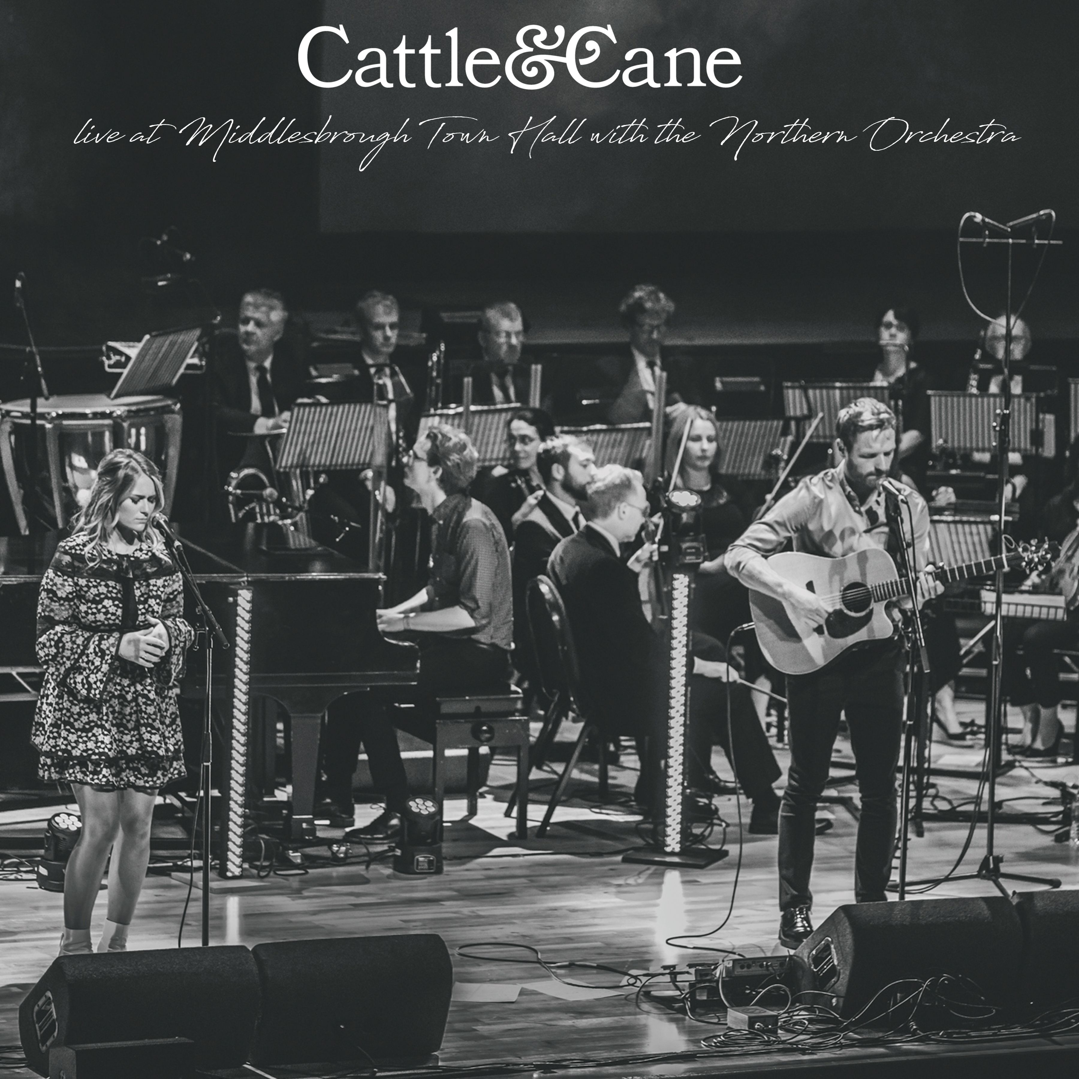 birdsong - by - cattle & cane - UK - indie music - indie rock - indie folk - new music - music blog - indie blog - wolf in a suit - wolfinasuit - wolf in a suit blog - wolf in a suit music blog