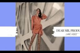 lyric video - dear mr. producer - estella dawn - indie - indie music - indie pop - USA - new music - music blog - wolf in a suit - wolfinasuit - wolf in a suit blog - wolf in a suit music blog