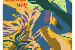 wolf - lupa - norway - indie - indie music - indie rock - indie folk - new music - music blog - wolf in a suit - wolfinasuit - wolf in a suit blog - wolf in a suit music blog