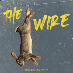 the wire - dry clean only - usa - indie - indie music - indie pop - indie rock - indie folk - new music - music blog - wolf in a suit - wolfinasuit - wolf in a suit blog - wolf in a suit music blog