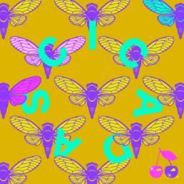 cicadas - young & sick - netherlands - indie - indie music - indie pop - indie rock - indie folk - new music - music blog - wolf in a suit - wolfinasuit - wolf in a suit blog - wolf in a suit music blog